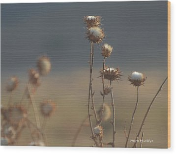 Wood Print featuring the photograph Fall Thistles At Dusk by Debby Pueschel