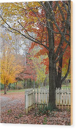 Fall Tranquility Wood Print by Debbie Green