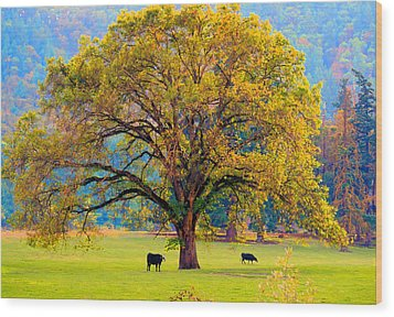 Fall Tree With Two Cows Wood Print