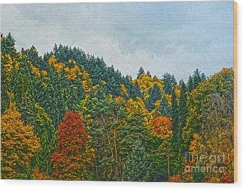 Fall Trees Wood Print by Nur Roy