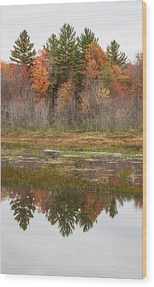 Fall Trees Reflected In Lake Chocorua Wood Print by Karen Stephenson