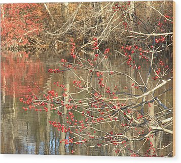 Fall Upon The Water Wood Print by Bruce Carpenter