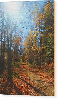Fall Vermont Road Wood Print by Alicia Knust