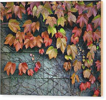 Fall Wall Wood Print