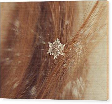Fallen Flake Wood Print