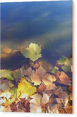 Fallen Leaf Wood Print by Susan Townsend