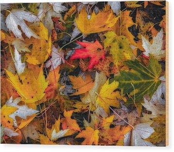 Fallen Leaves Wood Print by Dennis Bucklin