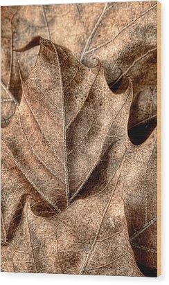 Fallen Leaves I Wood Print by Tom Mc Nemar