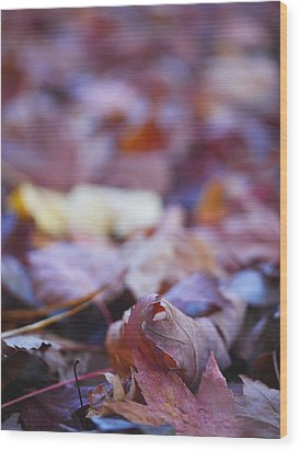 Fallen Leaves Road Wood Print by Irina Wardas