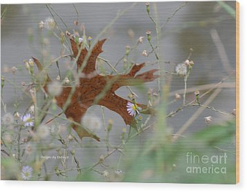 Wood Print featuring the photograph Fallen Oak Leaf Caught In Weeds by Debby Pueschel