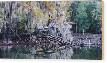 Wood Print featuring the photograph Fallen Reflection by Lana Trussell