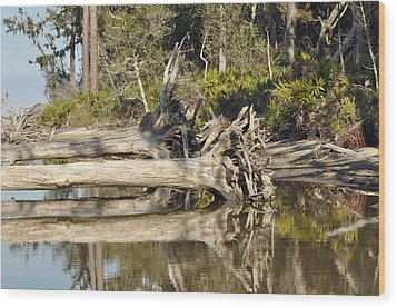 Fallen Trees Reflected In A Beach Tidal Pool Wood Print by Bruce Gourley