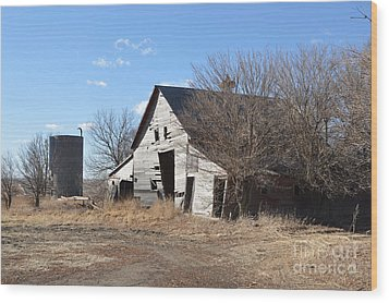 Falling Barn Wood Print by Renie Rutten