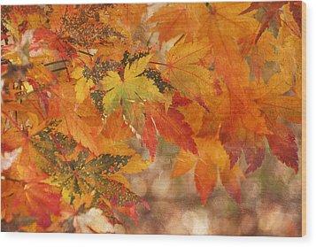 Falling Colors I Wood Print