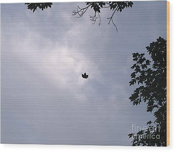 Falling Leaf Aka Lucky Shot Wood Print