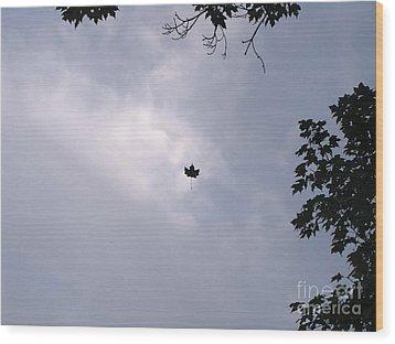 Falling Leaf Aka Lucky Shot Wood Print