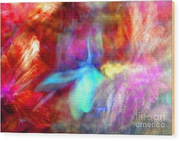 Falling Petal Abstract Red Magenta And Blue B Wood Print