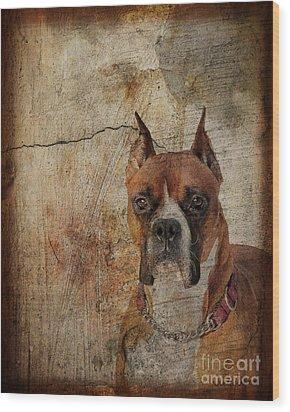 Falling Through The Cracks Wood Print by Judy Wood