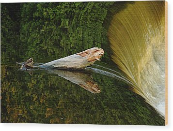 Wood Print featuring the photograph Falling Tree Reflections by Debbie Oppermann