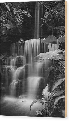 Falling Waters Wood Print