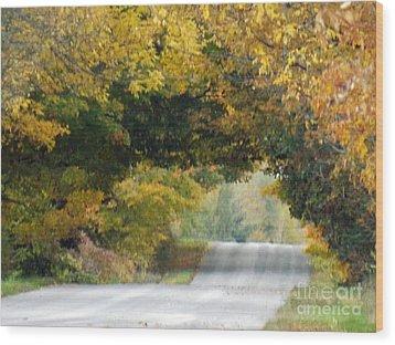 Falls Archway  Wood Print by Brenda Brown