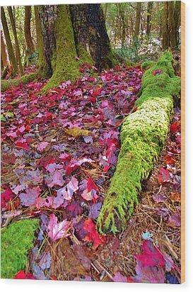 Fall's Carpet Wood Print