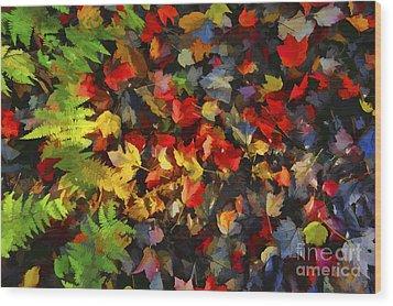 Falls Color Palette Wood Print by Dan Friend