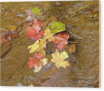Falls Colors 6349 Wood Print