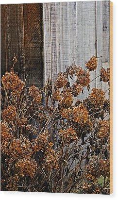 Fall's Fleeting Memories Wood Print by Cathy Shiflett