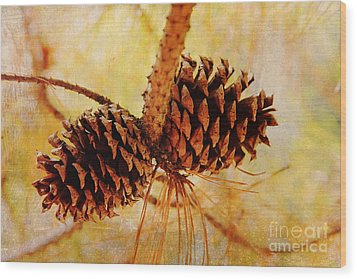 Wood Print featuring the photograph Fall's Golden Light by Trina  Ansel