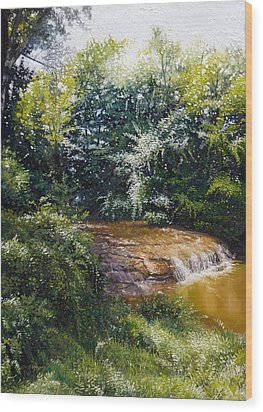 Falls Wood Print by Gregg Hinlicky