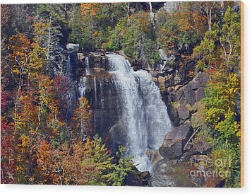 Falls In Fall Wood Print by Lydia Holly