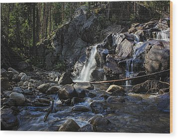 Falls In The Forest Wood Print
