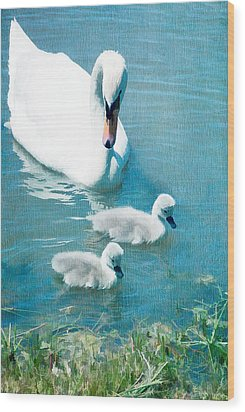 Family Of Swans At The Market Common Wood Print by Vizual Studio