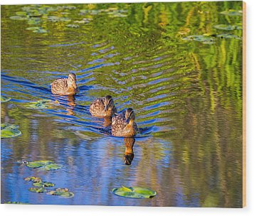 Family Outing On The Lake Wood Print