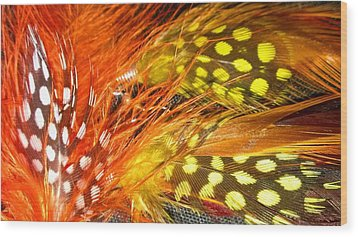 Fancy Feathers Wood Print by Catherine Ratliff