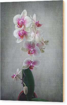Wood Print featuring the photograph Fancy Orchids by Louise Kumpf