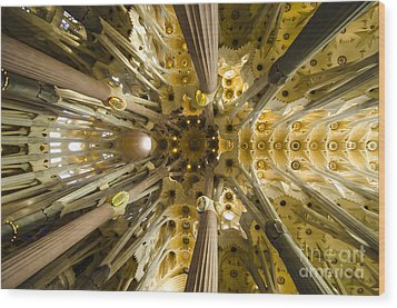 Fantabulous Sagrada Ceiling Wood Print