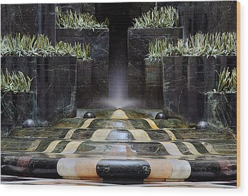 Wood Print featuring the photograph Fantastic Fountain by Glenn DiPaola