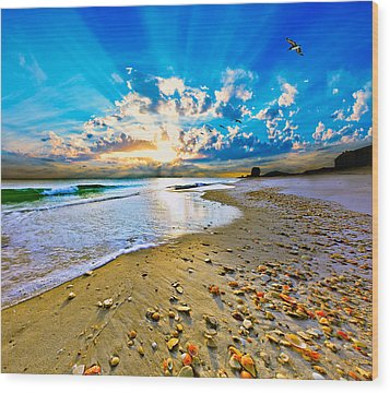 Wood Print featuring the photograph Fantasy Art-birds Flying Into Sunset Over Shell Covered Beach by Eszra
