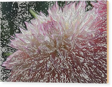 Wood Print featuring the photograph Fantasy Dahlia by Denyse Duhaime