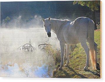 Fantasy Fog Wood Print by Leslie Kirk