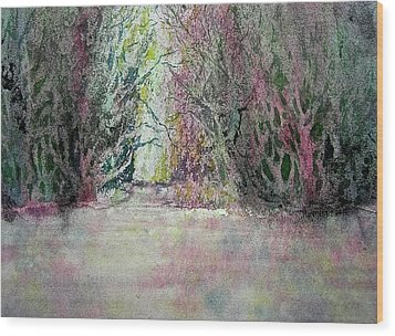 Fantasy Waterfall Wood Print by Carolyn Rosenberger