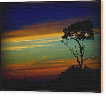 Farewell Sweet Sun Wood Print