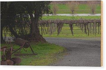 Farm And Vineyard Wood Print