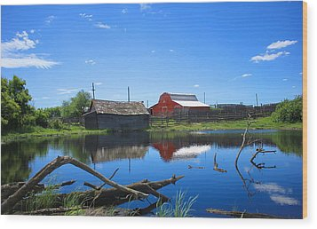 Farm Buildings And Pond. Wood Print by Jim Sauchyn
