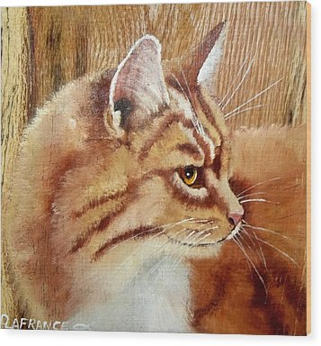 Farm Cat On Rustic Wood Wood Print by Debbie LaFrance