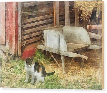 Farm Cat Wood Print by Susan Savad