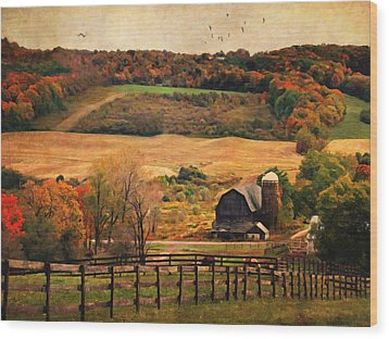Farm Country Autumn - Sheldon Ny Wood Print by Lianne Schneider