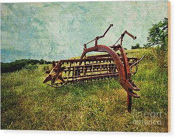 Farm Equipment In A Field Wood Print by Amy Cicconi